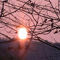 Photos: 同じ夕陽でも所変われば