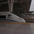 Photos: 中国、上海虹橋駅に集う各種列車