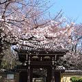 Photos: 威光山法明寺山門