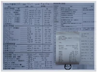 20120415 アドバンスドック(血液検査・心臓&肺のレントゲン)結果