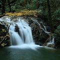 Photos: 七ッ滝 6の滝(1) モミジ
