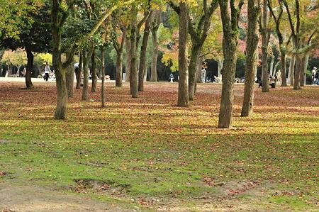 奈良公園2011秋-03