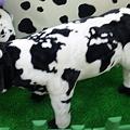 写真: 世界地図柄な牛のぬいぐるみ...